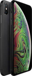 Apple iPhone Xs Max 64 Go Gris sidéral
