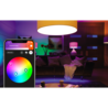 PHILIPS HUE Ampoule E27 duopack - White and color ambiance 8718696729052