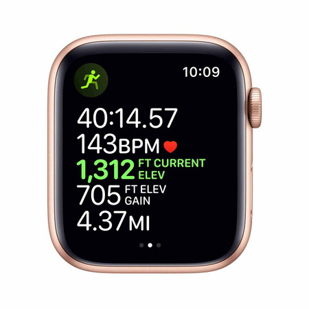 Apple Watch Series 5 - Gold - Sand Pink (44mm)