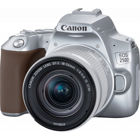 Canon EOS 250D Argent + objectif EF-S 18-55mm f/4-5.6 IS